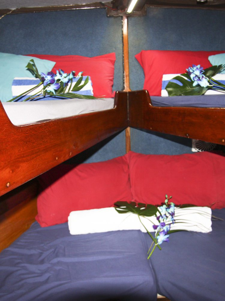 Coral Sea Dreaming - Share Double beds