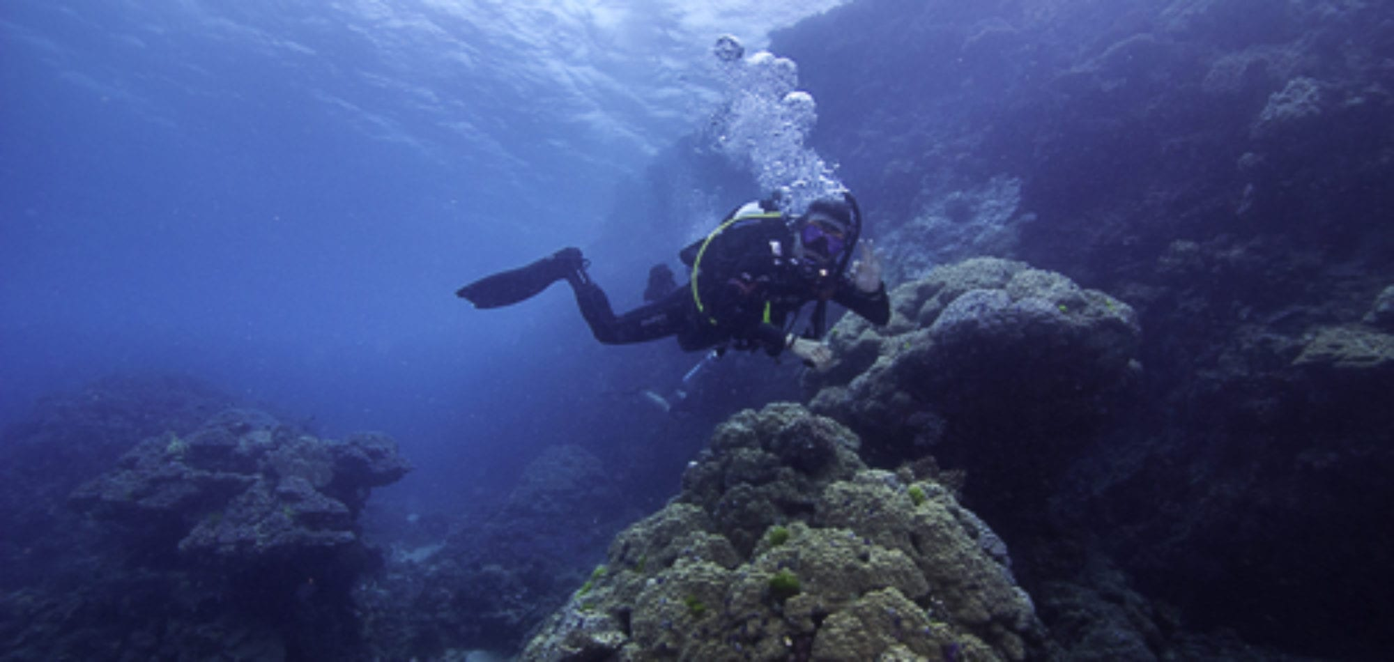 Divers on the Great Barrier Reef - Whitsunday Islands