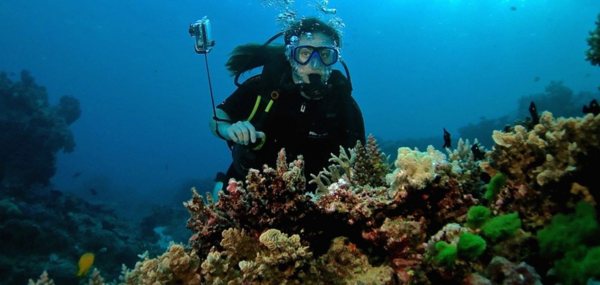 Cairns reef trip - scuba diver on the Great Barrier Reef
