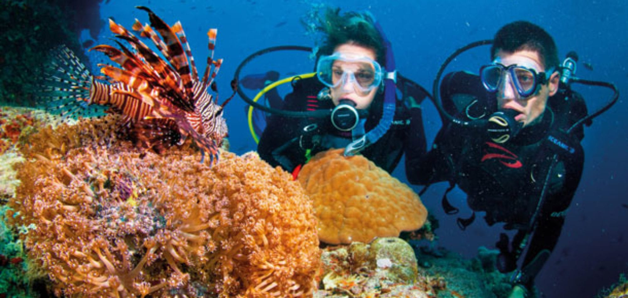 Cairns day trip - scuba divers on the Great Barrier Reef