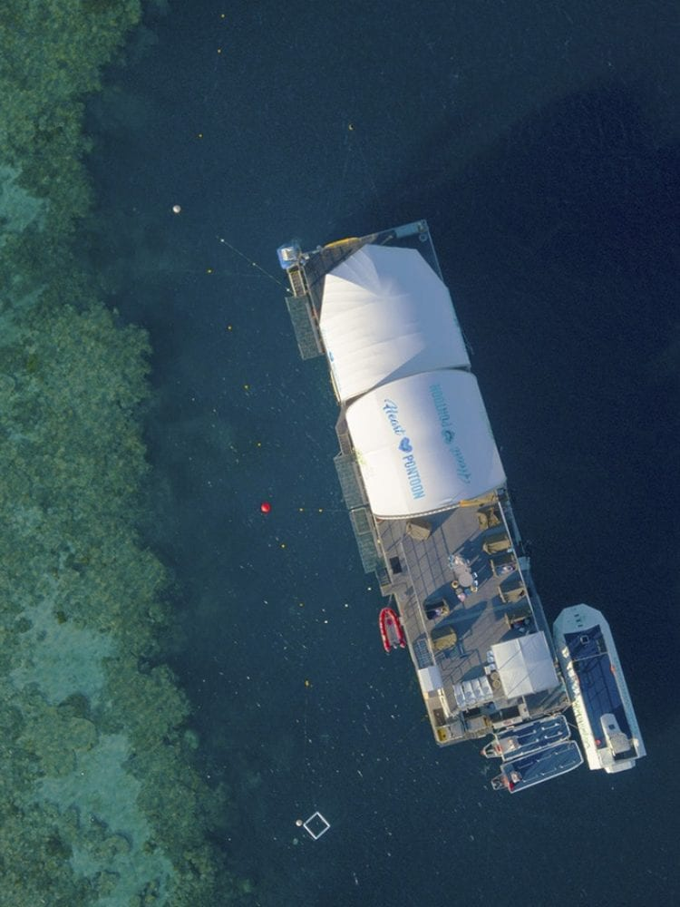 Whitsundays scuba diving and snorkelling - aerial shot of Hardy Reef Pontoon