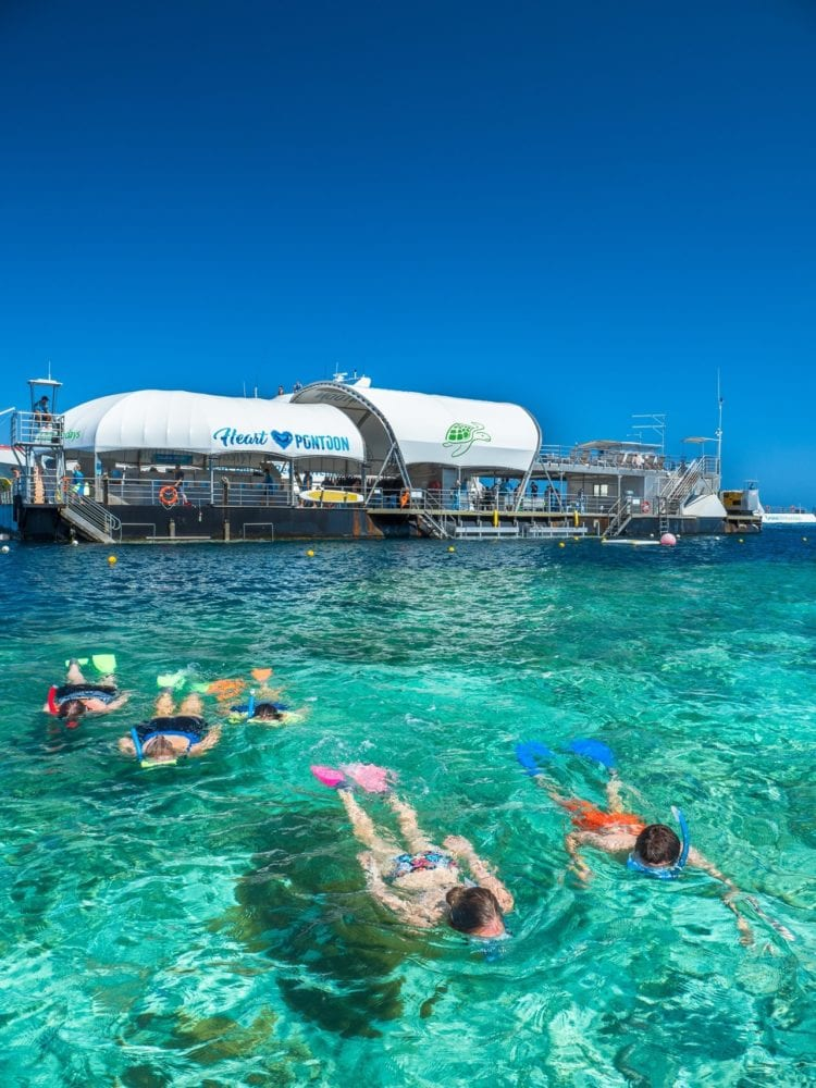 Whitsundays diving and snorkelling - snorkellers relaxing in the water at the Outer Barrier Reef Pontoon