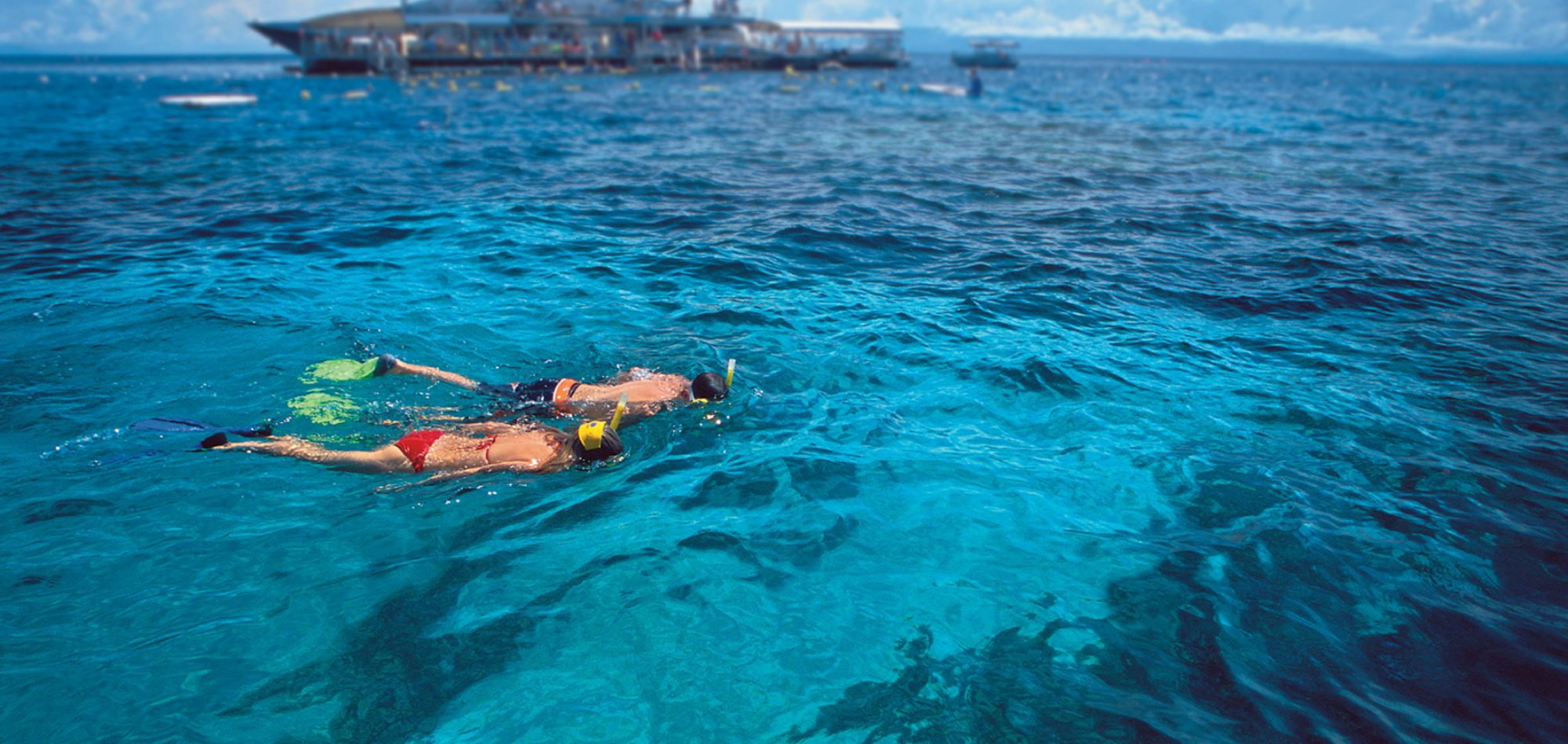 Quicksilver Cruises, Great Barrier Reef