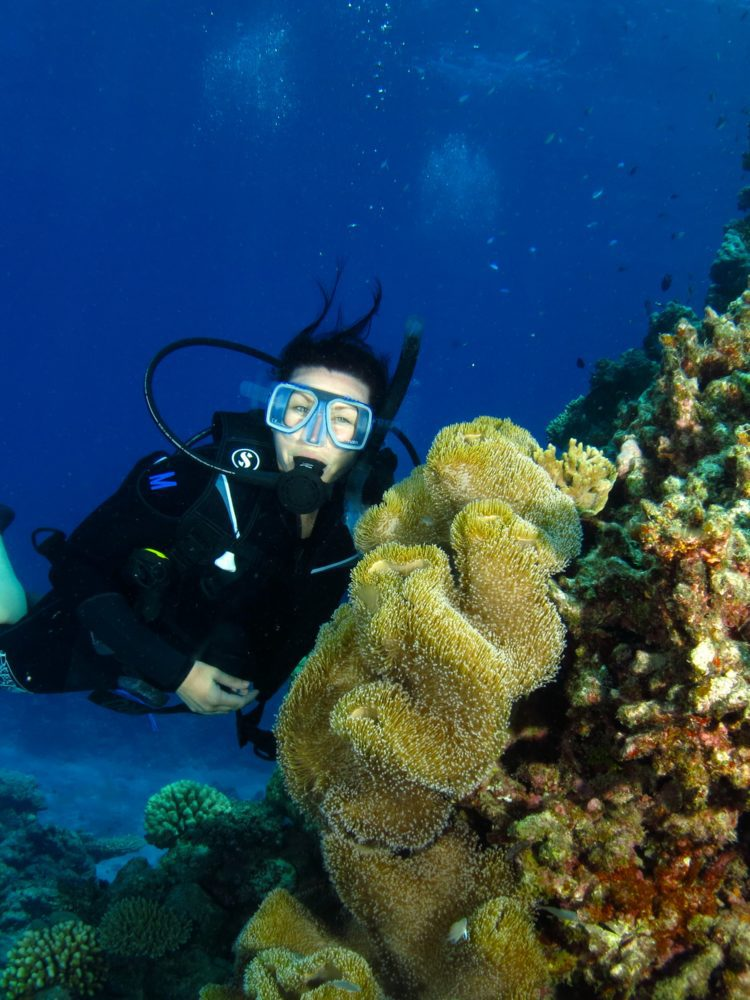 Dive In Australia Great Barrier Reef adventures - scuba diver pictured with coral