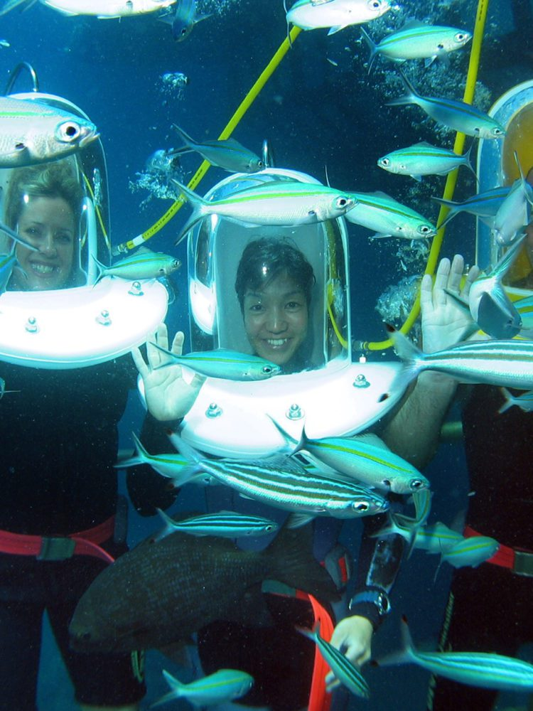 Helmut Diving with Quicksilver Cruises, Great Barrier Reef